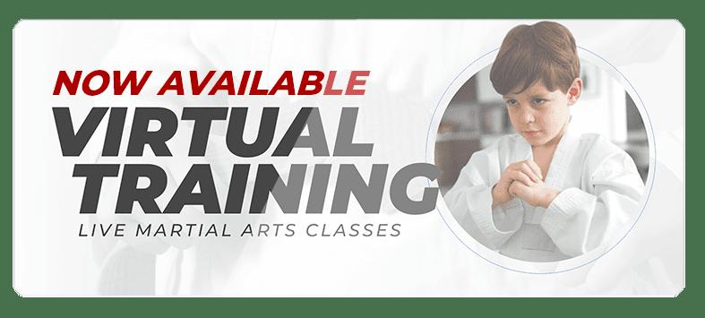 VIRTUALPOPUPSPARK.1.1, Sell Team Academy of Taekwondo Lakeland, FL