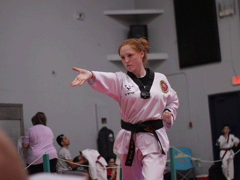 adult martial arts in lakeland